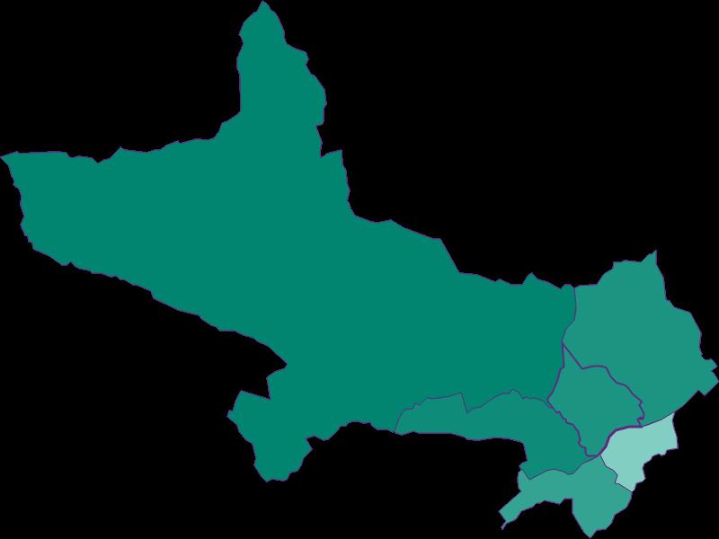 Прирост населения за 1869-2018   Wiesing