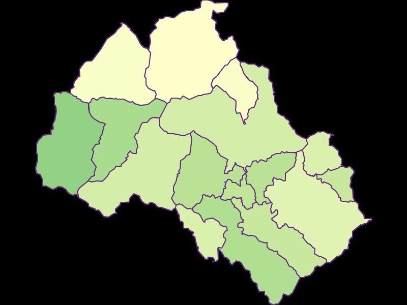 Youth in Leoben