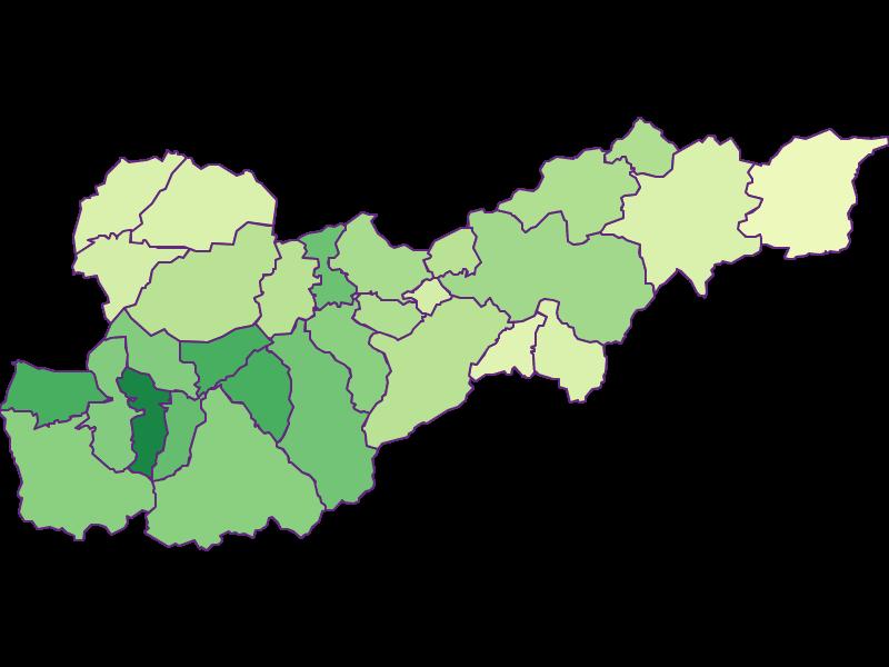 Youth in Liezen