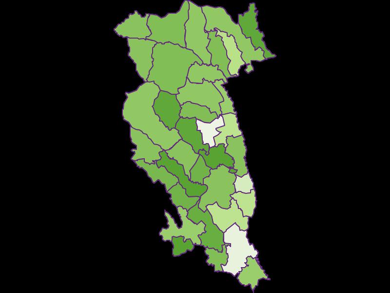Settlement in Hartberg-Fürstenfeld