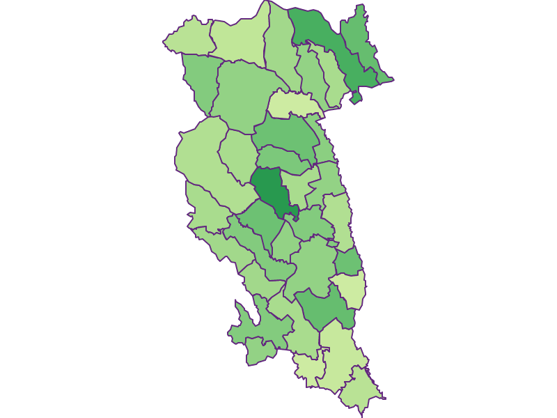 Youth in Hartberg-Fürstenfeld