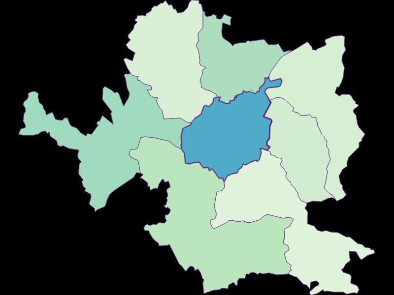 Доля иностранцев в Steyr