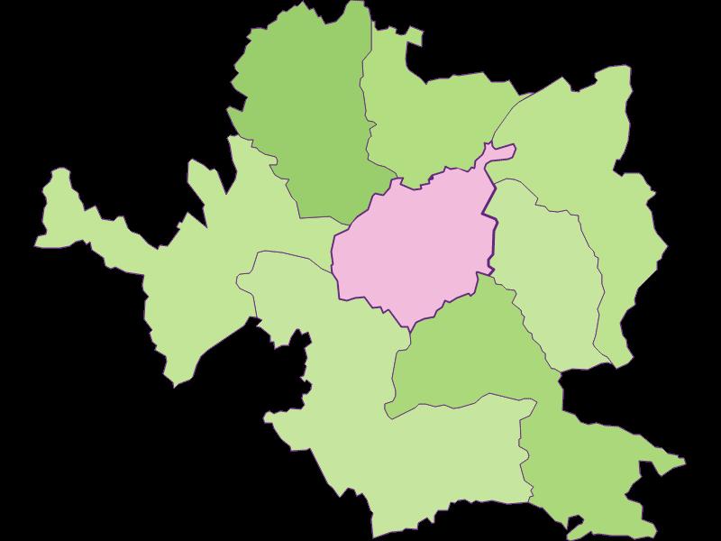 Заселенность в Steyr