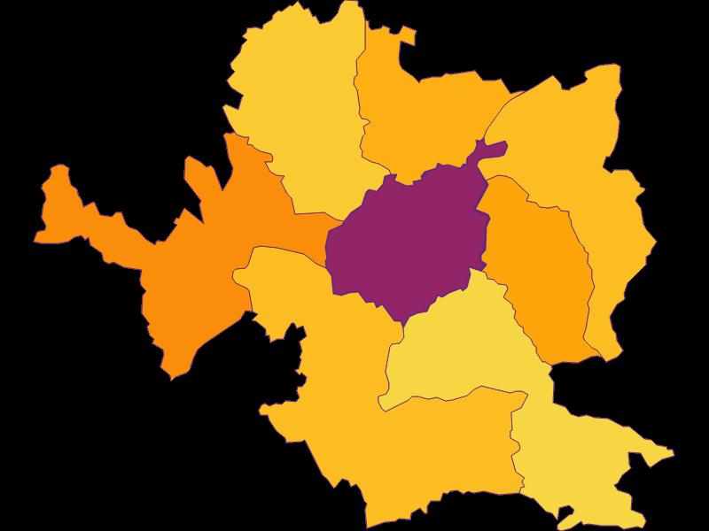 Плотность населения в Steyr