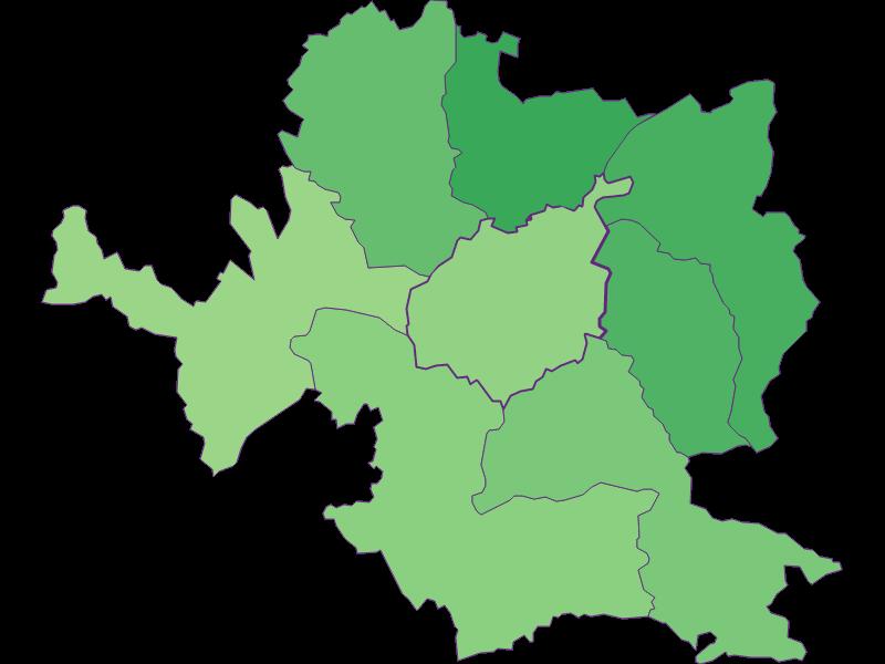 Молодежь в Steyr