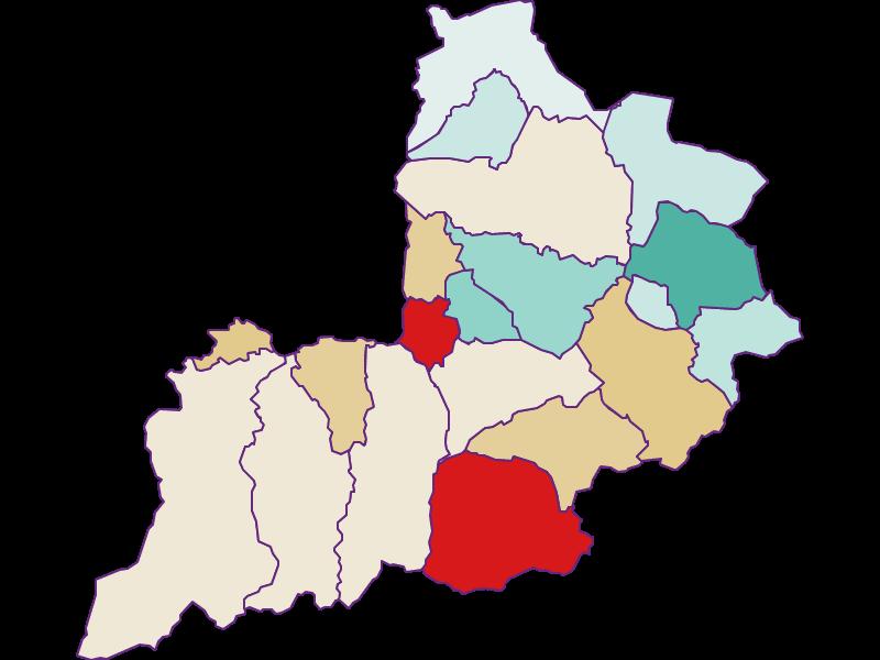 Демография с 2011 года в Kitzbühel