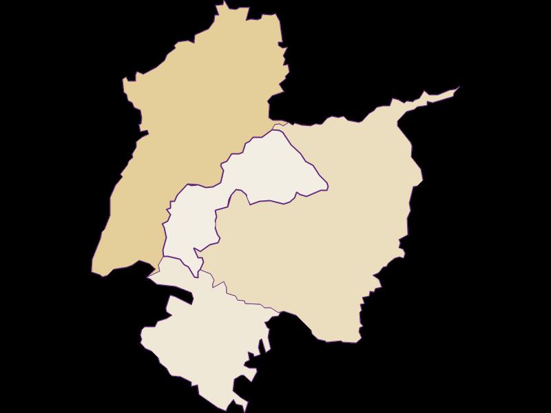 Population development since 1869 in Redleiten