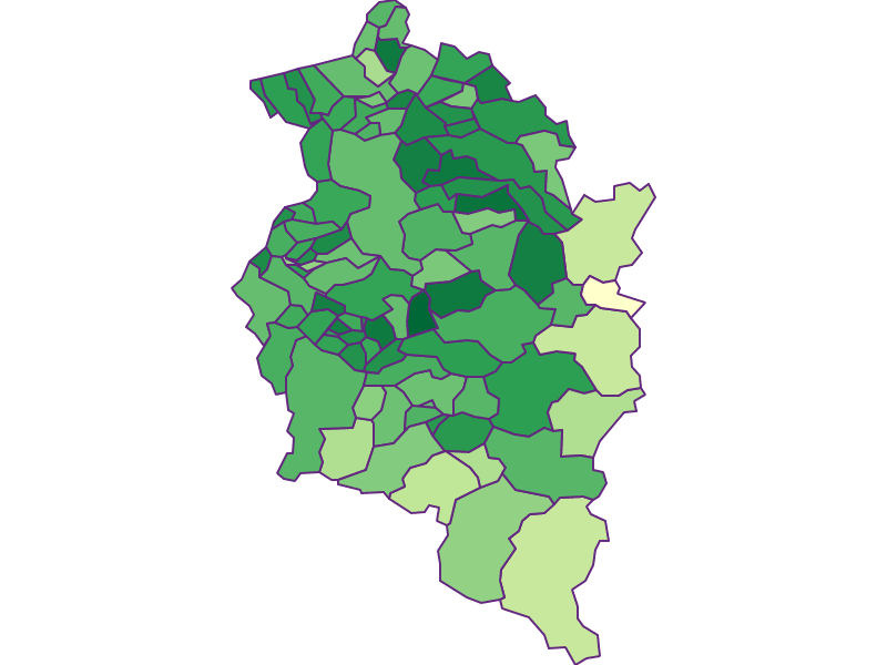 Youth in Vorarlberg