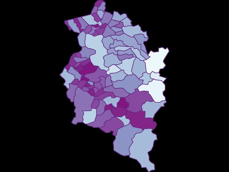 Маятниковые мигранты в Vorarlberg