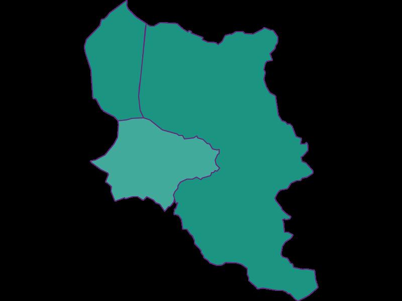 Population development since 1900 in Dornbirn