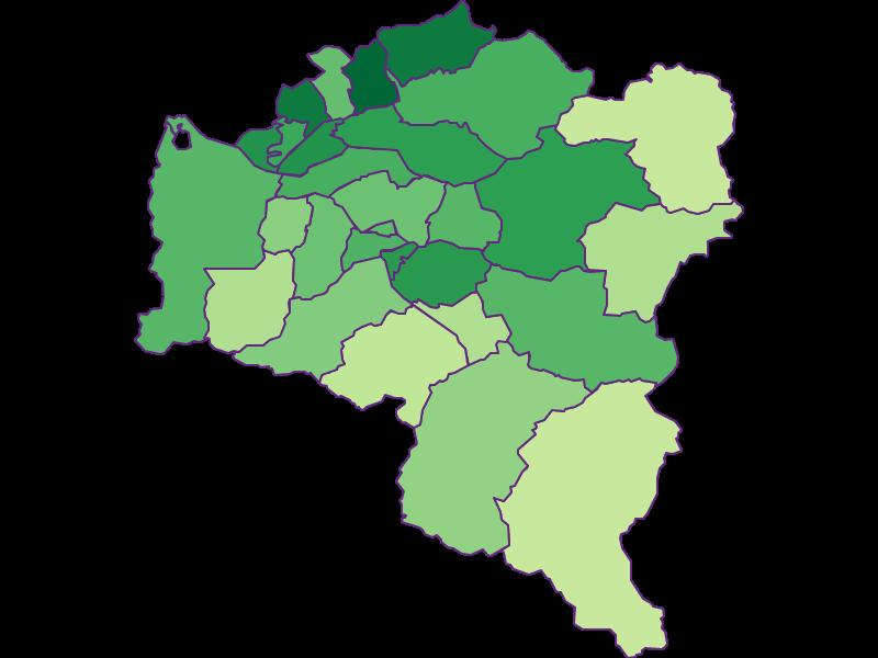Youth in Bludenz