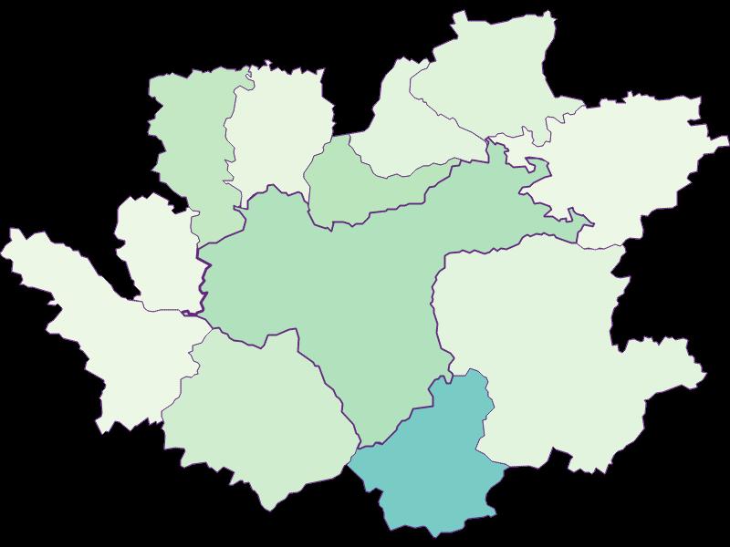 Доля иностранцев в Waidhofen an der Ybbs