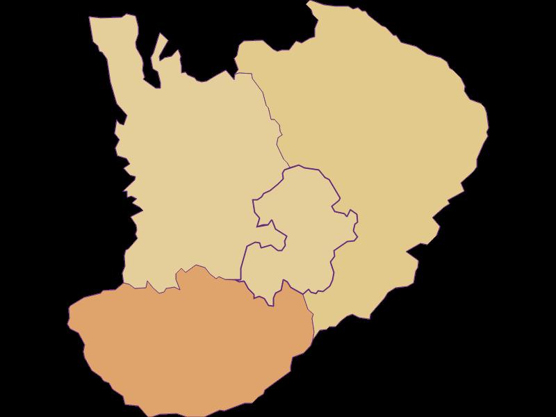 Population development since 1869 in Bad Schönau