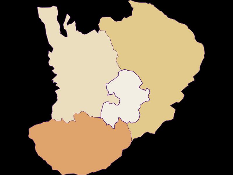 Population development since 1900 in Bad Schönau