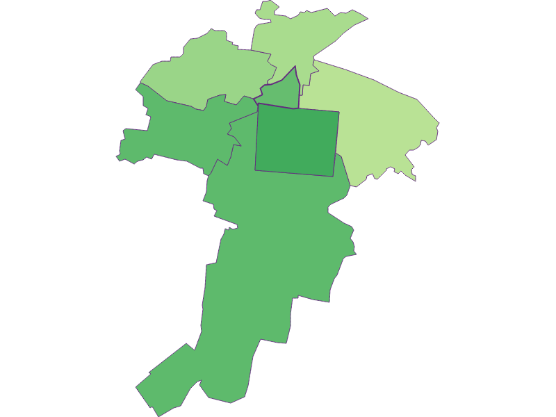 Youth in Felixdorf