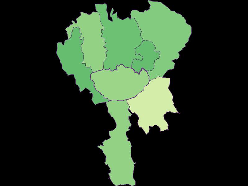 Youth in Hochneukirchen-Gschaidt