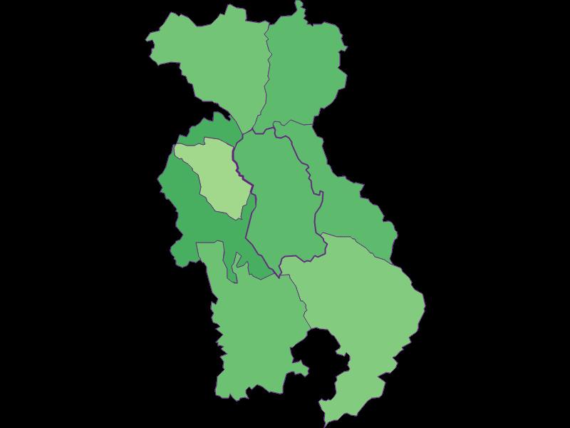 Youth in Lichtenegg