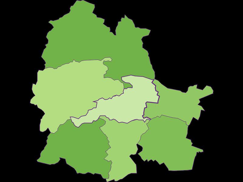 Settlement in Markt Piesting