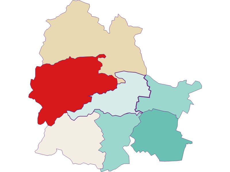 Population development since 1869 in Markt Piesting
