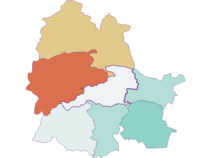 Population development since 1900 in Markt Piesting