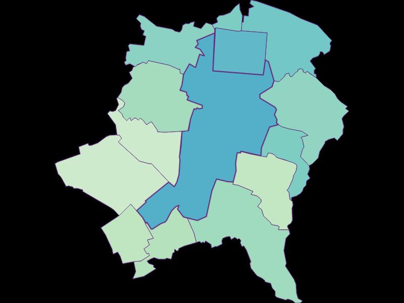 Доля иностранцев в Wiener Neustadt